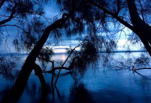 Crepuscule Myall Lake East Coast