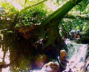 Remontee riviere bivouac
