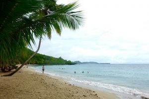 Plage Anse Figuier a Riviere-Pilote