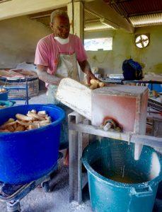 Rapeuse a manioc
