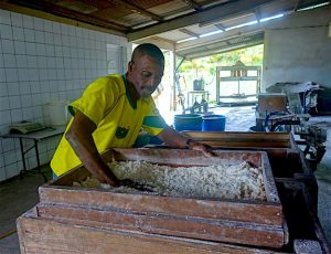 Tamisage farine manioc