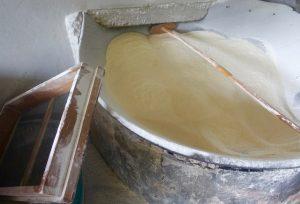 refroidissement manioc