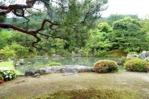 Jardin temple Tenryu-ji - Kyoto