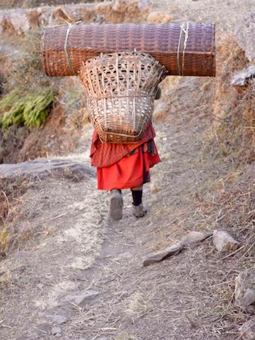Descente de la vallee de Langtang