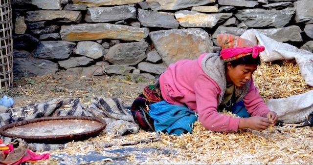 Jeune fille au travail Village de Tamang