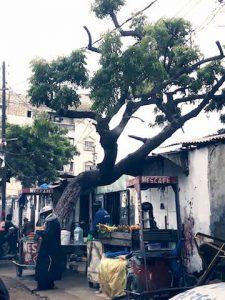 Fadiouth - Dakar