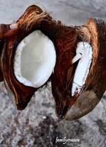 Coco sec - tablettes coco