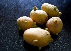 Pommes de terre - confinement