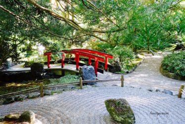 Meditation - pont japonais