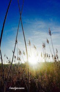 soleil meditation
