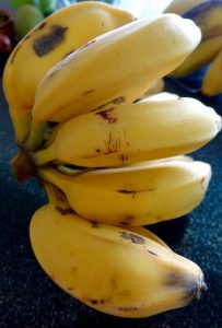 Bananes - vie nouvelle - familyevasion