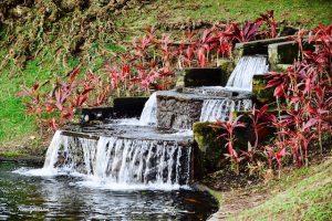 Fontaine - habitat