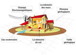 Geobiologie - habitat
