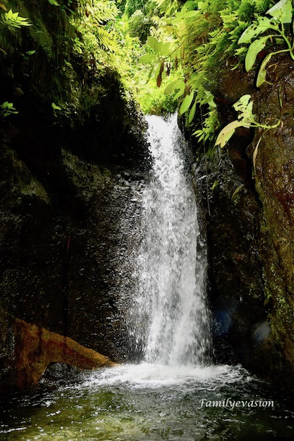Cascade Dany - familyevasion