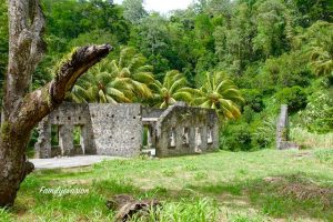 Ruines Fond Moulin - Balade Martinique - Familyevasion