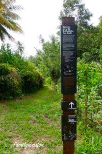 parcours Fond Moulin - Balade en Martinique - familyevasion