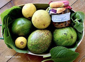 Fruits de saison - Jardin creole
