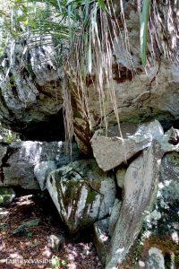 roche andesite