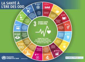 Objectifs ONU - ODD - Développement durable