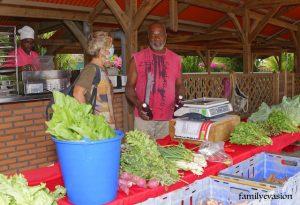Charles a la ferme Perrine - agriculture biologique