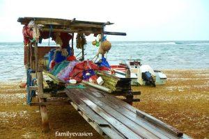 Quai pêcheurs - sargasses